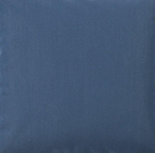 Blue Shadow 10
